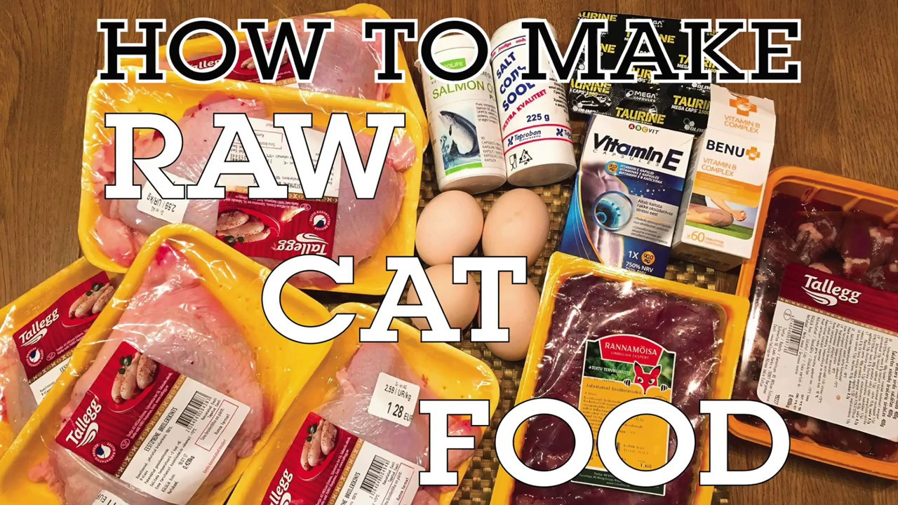 How to make raw cat food quick and easy tutorial youtube how to make raw cat food quick and easy tutorial forumfinder Choice Image
