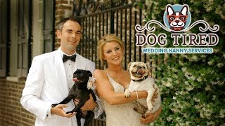 Dog Tired Wedding Nanny Extended Version 843 408-1033