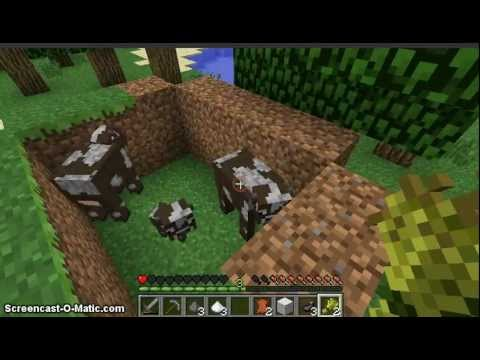 Minecraft raising cows - FOREX Trading