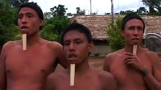 Protecting The Tribes | Amazon: Truth And Myth | BBC Earth