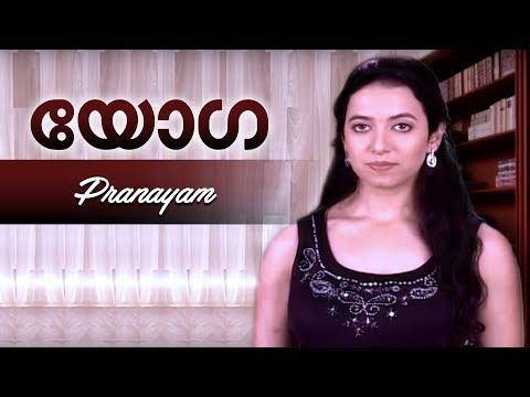 Pranayam   Yoga for Meditation & Stress Relief in Malayalam   Meditation for Beginners
