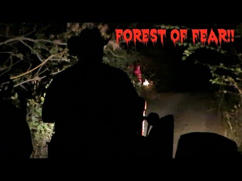 Daily Vlog #23 - Forest of Fear!!