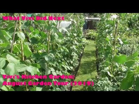 vivi's-kitchen-garden:-august-garden-tour-(2019).