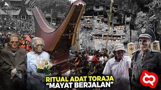 Bukti Magisnya Budaya & Keindahan Alam Tana Toraja yang Menarik Perhatian Wisatawan Mancanegara