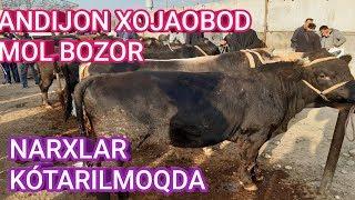 #ANDIJON #XOJAOBOD MOL BOZOR