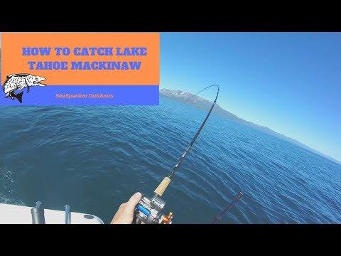 How To Catch Lake Tahoe Mackinaw