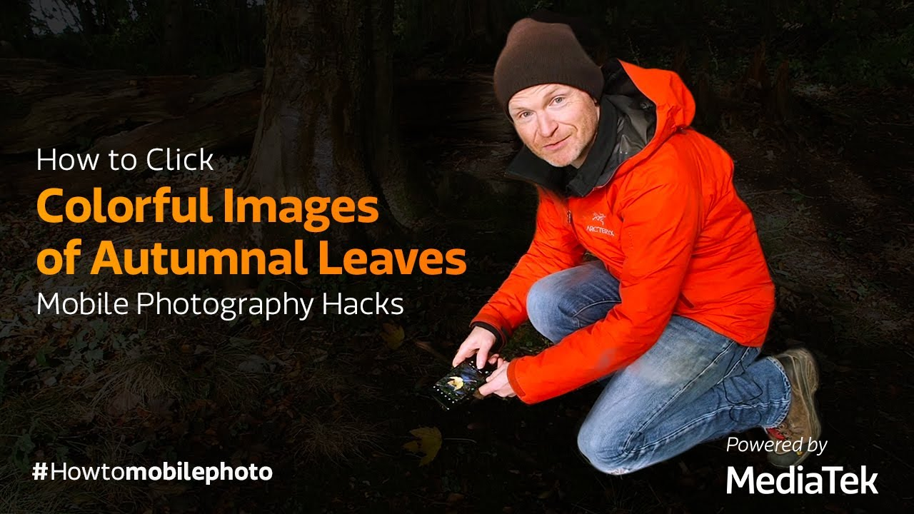 How to Click Colorful Images of Autumnal Leaves | Mobile Photography Hacks