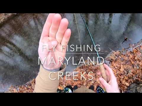 Winter Fly Fishing In The Maryland Mountains