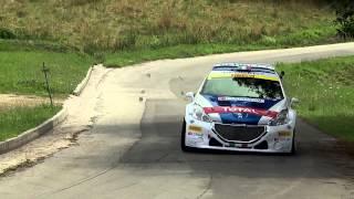 Peugeot 208 T16 - Paolo Andreucci:... io la guido così!