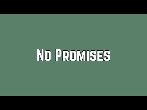 Shawn Mendes - No Promises (Lyrics)