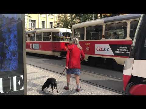 チェコ・プラハ 散歩 中央駅~旧市街地まで!Czech Republic Praha/Prague walk from central station to old town