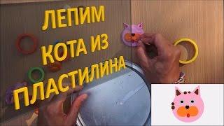 Лепим КОТА из пластилина| Лепка животных из пластилина