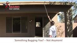 Arizona Termite | Free Termite Home Inspection | Magic Pest Control call 480-654-5888.