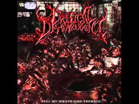 Critical Dismemberment Interview 2014 Part 2