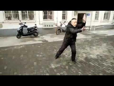 八极拳小架部分简易讲练—镇江张成中 Baji quan Xiao Jia Bufen Jianyi Jiang Lian -  Zhenjiang Zhamgchengzhong