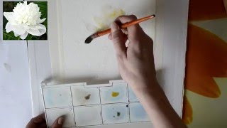 Мастер класс #7 Картина акварелью. Пион.(В данном видео я показываю свой способ
