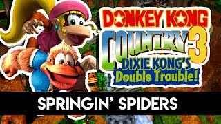 #5 Donkey Kong Country 3 : Springin' Spiders