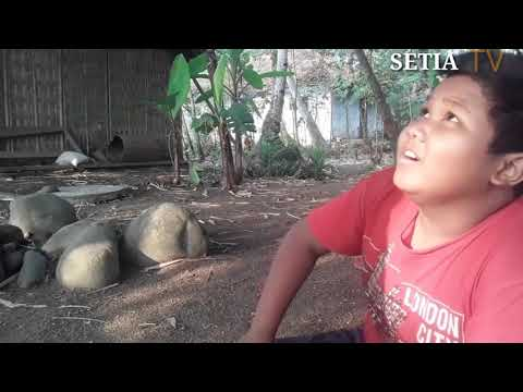 PECANDU GAME ONLINE | MERESAHKAN MASYARAKAT. | SETIA TV📺 #TEMPENE #PEKALONGAN