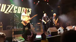 Buzzcocks love you more,Promises and What do I get. Rebellion 2018