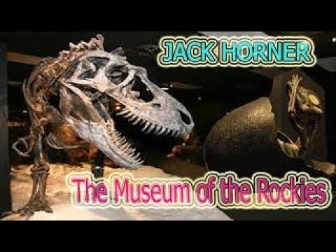 Museum of the Rockies Travel Destination & Attraction | Visit Museum of the Rockies
