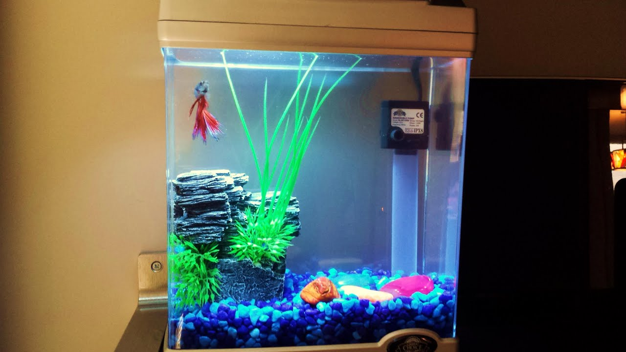 Betta tank setup cool idea youtube for Aquarium decoration ideas cheap
