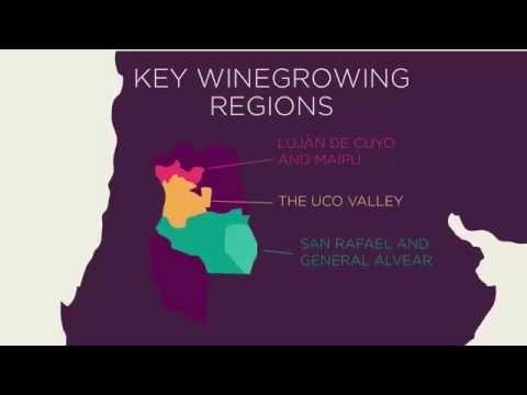 Discover Mendoza Wines - VINOA