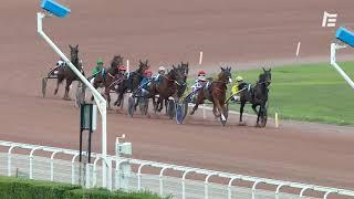 Vidéo de la course PMU PRIX DU PALAIS ROYAL