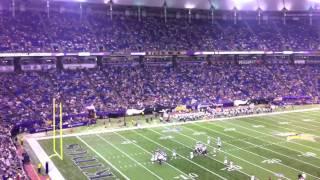 SKOL Minnesota Vikings!