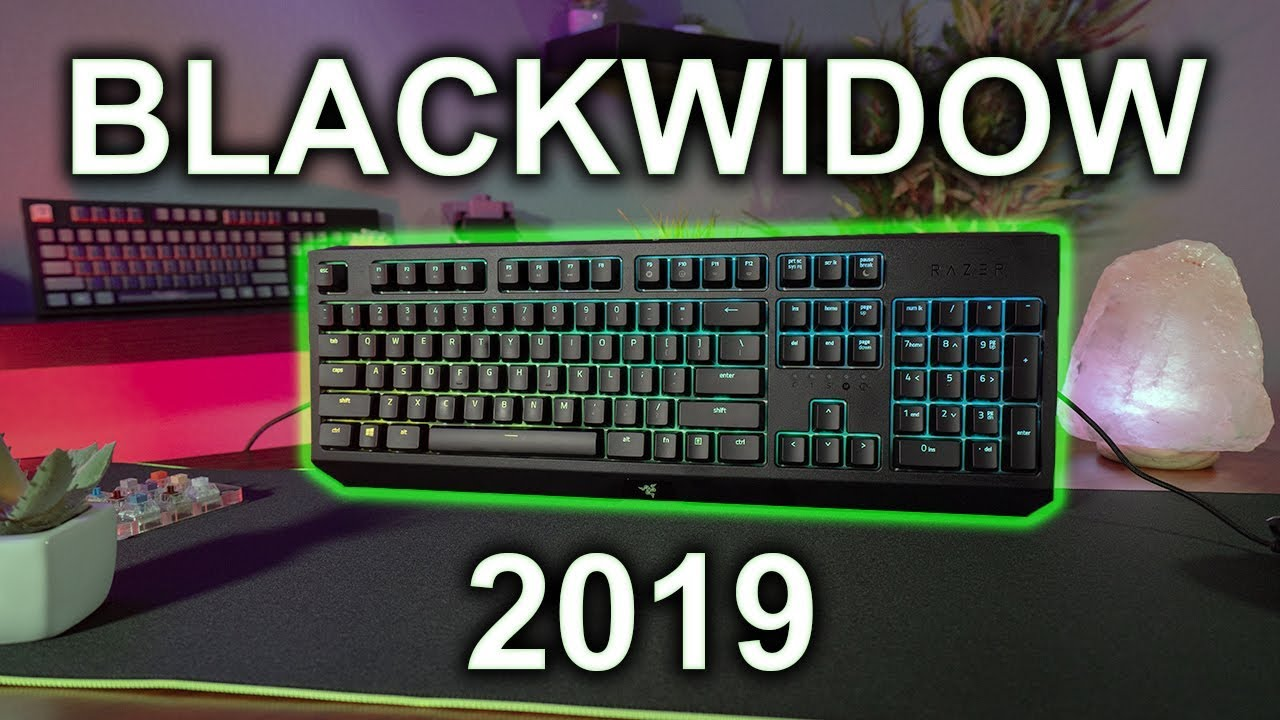NEW Razer Blackwidow 2019 Keyboard Review