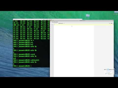 Bash Shell Scripting On Mac OS X