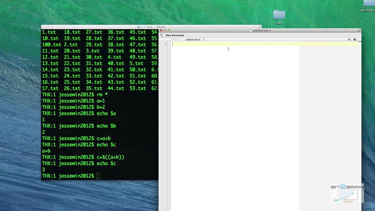 bash shell scripting on mac os x youtube