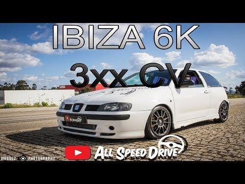 Seat Ibiza 6K2 PD 3XX CV *Fumarenta*