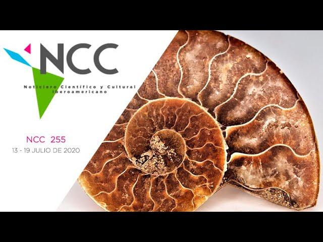 Noticiero Científico y Cultural Iberoamericano, emisión 255. 13 al 19 de Julio 2020
