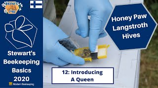 Honey Paw Series: 12 Introducing a Queen - Stewart Spinks at the Norfolk Honey Co.