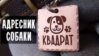 Адресник для собаки с гравировкой - Жетон и медальон
