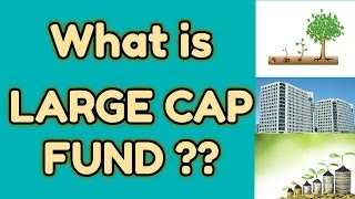 What is Large Cap Funds ? Explained in Hindi