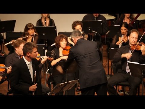 Mendelssohn flute concerto op. 64, Karl-Heinz Schütz. NKO. Shalev Ad-El
