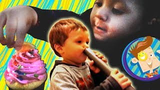 Family Vlog Face Vacuum  Chase's Cupcake  Skylanders  Pet Store + More Happy New Years