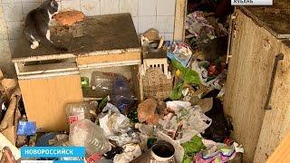 Женщина превратила свою квартиру в полигон бытовых отходов и кошачий питомник