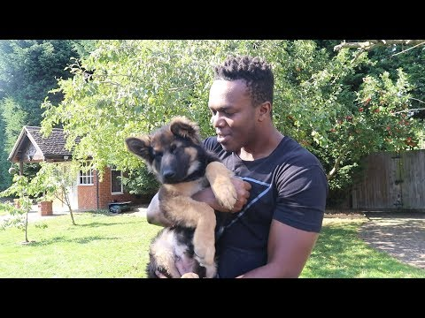 Download Youtube: KSI IS FINALLY HERE