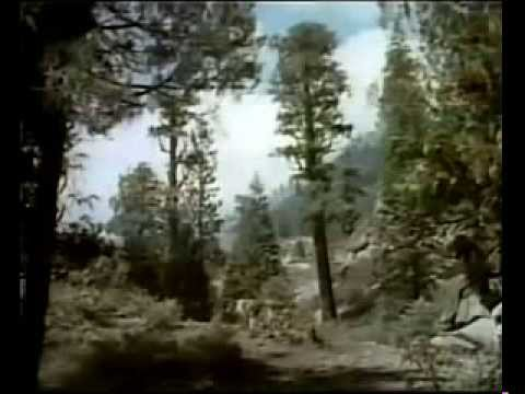 The Painted Hills (1951) LASSIE