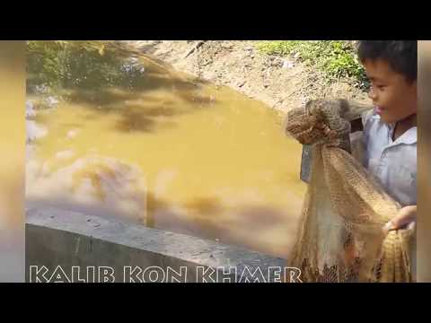 Kalib Kon Khmer, Funny Little 2 Boy Net Fishing, Cambodia Traditional Fishing