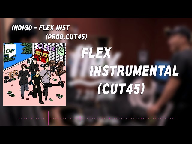 FLEX INST -??? FLEX ??, ?? ??, MR  (PROD. CUT45)