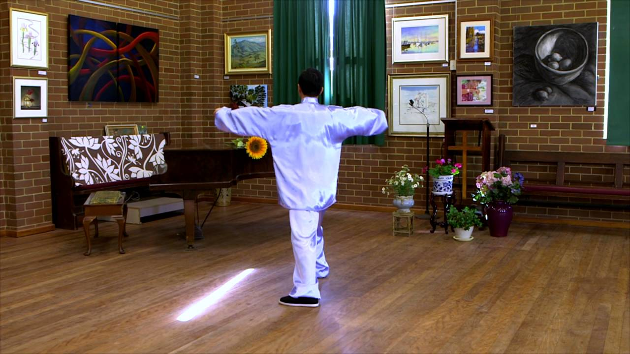 Tai Chi 24 Form (Back View with Instructions)