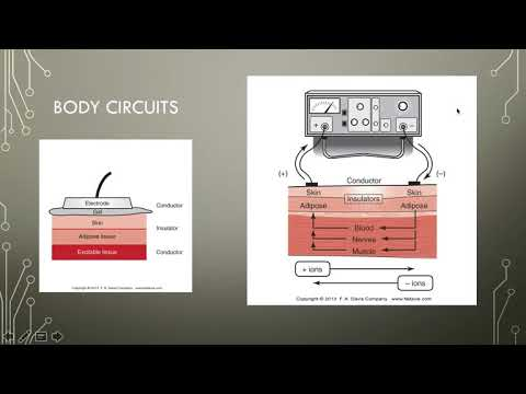 Electrotherapy 7 Physiological Responses