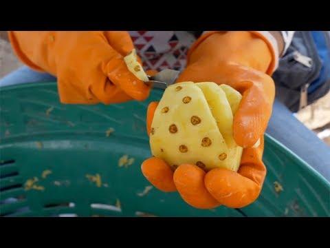 Mini Pineapples Cutting   Thai Street Food