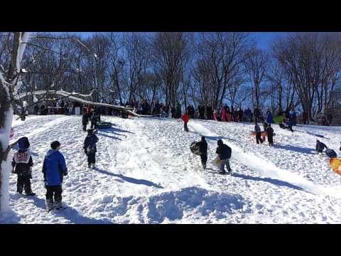 Crazy Sled Jump At Coindre Hall In Huntington, 2013
