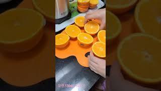 [과일착즙기] 오렌지100% 주스만들기
