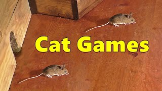 Cat Games Mouse 🐭 Mice Fun for Cats