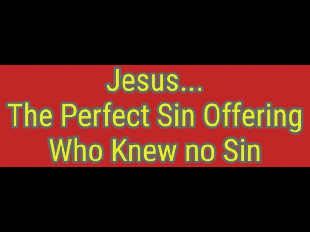 Jesus The Perfect Sin Offering Who Knew No Sin